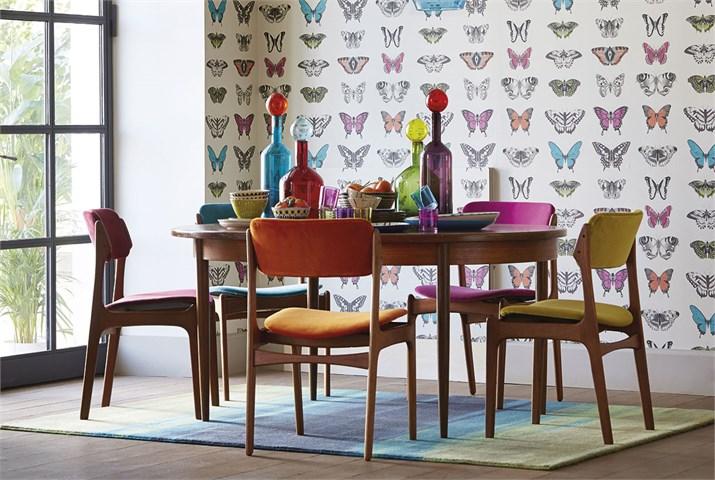 Harlequin-Amazilia-Wallpapers