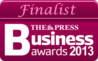 Press Business Award 2013 - logo